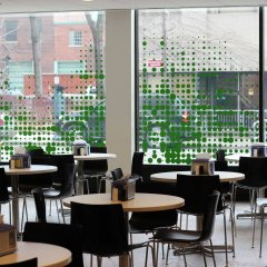 Отель Chestnut Residence and Conference Centre - University of Toronto гостиничный бар