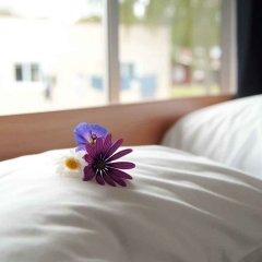 Отель Whanganui River Top 10 Holiday Park сауна