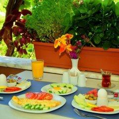 Golden Pension Турция, Патара - отзывы, цены и фото номеров - забронировать отель Golden Pension онлайн питание фото 3