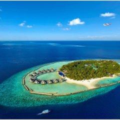 Отель Ellaidhoo Maldives by Cinnamon с домашними животными