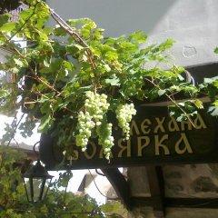 Отель Bolyarka Болгария, Сандански - отзывы, цены и фото номеров - забронировать отель Bolyarka онлайн балкон