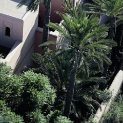 Отель Royal Mansour Marrakech фото 11