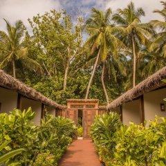 Отель Plumeria Maldives фото 14
