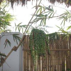 Отель An Bang Vera Homestay Вьетнам, Хойан - отзывы, цены и фото номеров - забронировать отель An Bang Vera Homestay онлайн фото 5