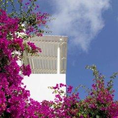 Отель Meli Meli Греция, Остров Санторини - отзывы, цены и фото номеров - забронировать отель Meli Meli онлайн фото 2