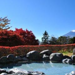 Hotel Mt. Fuji Яманакако с домашними животными
