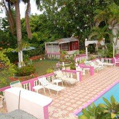 Отель PinkHibiscus Guest House с домашними животными