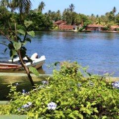 Отель Queen River Inn Шри-Ланка, Берувела - отзывы, цены и фото номеров - забронировать отель Queen River Inn онлайн приотельная территория