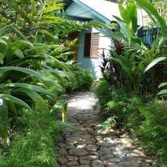Отель Colo-I-Suva Rainforest Eco Resort Вити-Леву