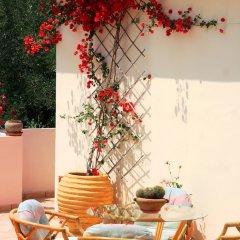 Отель Villa Phoenix Apartments & Studios Греция, Закинф - отзывы, цены и фото номеров - забронировать отель Villa Phoenix Apartments & Studios онлайн интерьер отеля