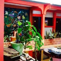 Отель & Hostal Yaxkin Copan Гондурас, Копан-Руинас - отзывы, цены и фото номеров - забронировать отель & Hostal Yaxkin Copan онлайн фото 9