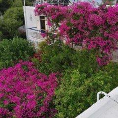 Отель Studios Marianna Греция, Эгина - отзывы, цены и фото номеров - забронировать отель Studios Marianna онлайн