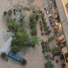 Amiga Hostel фото 2