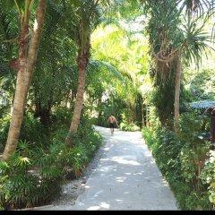 Отель Lanta Island Resort фото 18