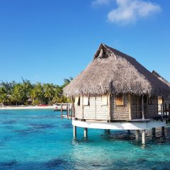 Отель Tikehau Pearl Beach Resort фото 3