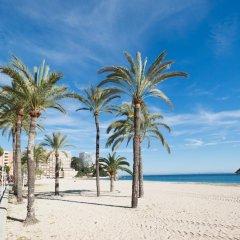 Отель Magalluf Strip Apartments Испания, Магалуф - отзывы, цены и фото номеров - забронировать отель Magalluf Strip Apartments онлайн фото 8