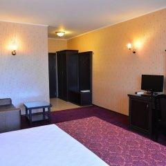 Отель Chateau-Hotel Trendafiloff Болгария, Димитровград - отзывы, цены и фото номеров - забронировать отель Chateau-Hotel Trendafiloff онлайн удобства в номере фото 2