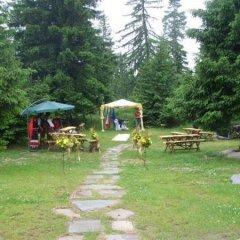 Отель Mountain Lake Hotel Болгария, Чепеларе - отзывы, цены и фото номеров - забронировать отель Mountain Lake Hotel онлайн фото 8