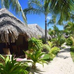 Отель Village Temanuata Французская Полинезия, Бора-Бора - отзывы, цены и фото номеров - забронировать отель Village Temanuata онлайн фото 22