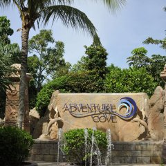 Resorts World Sentosa - Festive Hotel фото 7