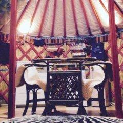 Гостиница Viking в Тихвине отзывы, цены и фото номеров - забронировать гостиницу Viking онлайн Тихвин гостиничный бар