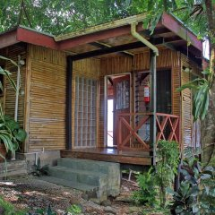 Отель Maravu Taveuni Lodge комната для гостей фото 2