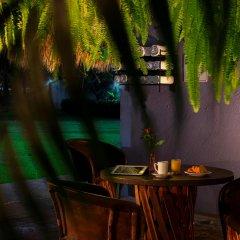 Отель Comfort Inn Puerto Vallarta Пуэрто-Вальярта гостиничный бар