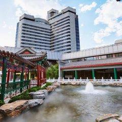 Отель Capital Hotel Китай, Пекин - 8 отзывов об отеле, цены и фото номеров - забронировать отель Capital Hotel онлайн бассейн
