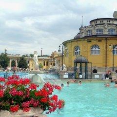 Отель Miller Hostel Венгрия, Будапешт - отзывы, цены и фото номеров - забронировать отель Miller Hostel онлайн бассейн фото 2