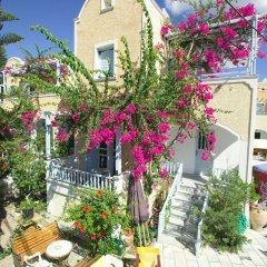 Отель Sellada Apartments Греция, Остров Санторини - отзывы, цены и фото номеров - забронировать отель Sellada Apartments онлайн фото 13