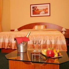 Отель Palace Plzen Пльзень в номере фото 2