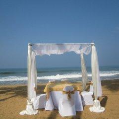 Отель Saffron Beach Шри-Ланка, Ваддува - отзывы, цены и фото номеров - забронировать отель Saffron Beach онлайн помещение для мероприятий фото 2