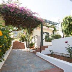 Отель Anastasia Hotel Греция, Малия - отзывы, цены и фото номеров - забронировать отель Anastasia Hotel онлайн фото 13