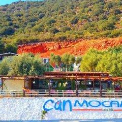 Can Mocamp Турция, Патара - отзывы, цены и фото номеров - забронировать отель Can Mocamp онлайн бассейн фото 2