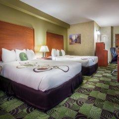 Отель Deerfoot Inn & Casino Канада, Калгари - отзывы, цены и фото номеров - забронировать отель Deerfoot Inn & Casino онлайн комната для гостей фото 3