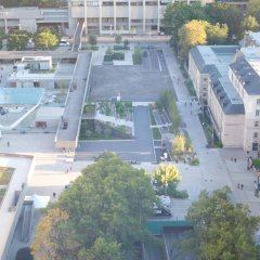 Отель Chestnut Residence and Conference Centre - University of Toronto фото 6
