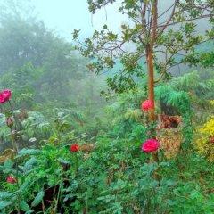 Отель Roses Cottage фото 10