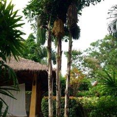 Отель Palm Garden Resort фото 6