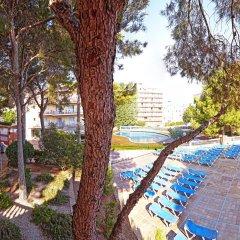 Отель MLL Palma Bay Club Resort бассейн