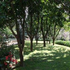 Отель Quinta do Sardão фото 29