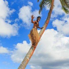Отель Maui Palms Фиджи, Вити-Леву - отзывы, цены и фото номеров - забронировать отель Maui Palms онлайн приотельная территория фото 2
