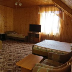 Alyona Hotel комната для гостей фото 5