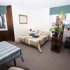 Отель Guest House Drusva Литва, Друскининкай - 1 отзыв об отеле, цены и фото номеров - забронировать отель Guest House Drusva онлайн фото 7