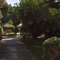 Hotel Miramare Чивитанова-Марке фото 3