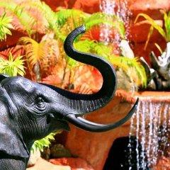 Отель Coco Palace Resort Пхукет питание фото 2