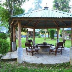 Отель Safari Adventure Lodge Непал, Саураха - отзывы, цены и фото номеров - забронировать отель Safari Adventure Lodge онлайн фото 17