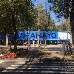 Отель CDMX Hostel Art Gallery Мексика, Мехико - отзывы, цены и фото номеров - забронировать отель CDMX Hostel Art Gallery онлайн детские мероприятия