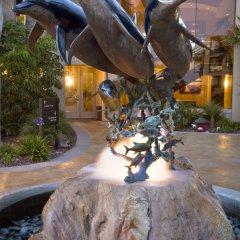 Отель Dolphin Bay Resort and Spa фото 10