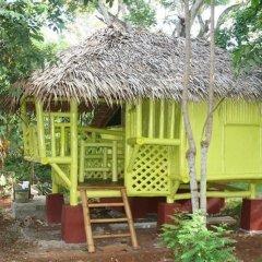 Отель Bamboo Rooms & Cottages by Dang Maria BB Филиппины, Пуэрто-Принцеса - отзывы, цены и фото номеров - забронировать отель Bamboo Rooms & Cottages by Dang Maria BB онлайн фото 7