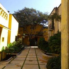 Отель Demetria Bungalows Мексика, Гвадалахара - отзывы, цены и фото номеров - забронировать отель Demetria Bungalows онлайн фото 3